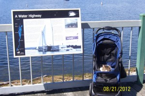 Culann stroller Lake Champlain
